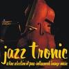 Couverture de l'album Jazztronic - a Fine Selection of Jazz-Influenced Lounge Music