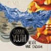Cover of the album Never Have Enough - Single