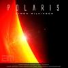 Cover of the album Polaris - Single