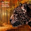 Cover of the album Imaginarium - Single