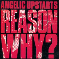 Cover of the track Reason Why?