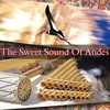 Cover of the album The Sweet Sound Of Andes