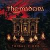 Couverture de l'album Tribal Fires