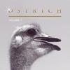 Cover of the album Ostrich, Vol. 1