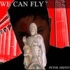 Couverture de l'album We Can Fly - Single