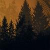 Couverture de l'album Above the Earth, Below the Sky