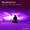 Couverture de l'album Meditation (Relax Your Mind to Save the World)