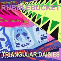 Couverture du titre Triangular Daisies
