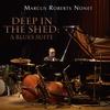 Couverture de l'album Deep in the Shed: A Blues Suite