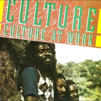 Cover of the track Culture at Work