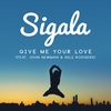 Couverture de l'album Give Me Your Love (feat. John Newman & Nile Rodgers) - Single