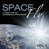 Cover of the album Space Fly, Vol. 1 - A Magic Chill Trip (Presented By Frank Borell)