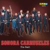 Couverture de l'album Sonora Carruseles: The Best