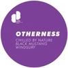 Couverture de l'album Otherness - EP