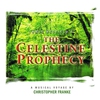 Cover of the album Celestine Prophecy (A Musical Voyage)