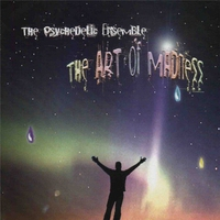Cover of the track The Art of Madness