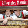 Cover of the track Marsch zum Tiroler Bauernstand