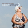 Cover of the album Peter Funk & Kevin Yost Present Big Sexy Sessions, Vol. 2