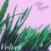 Cover of the album Velvet - EP