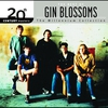 Cover of the album 20th Century Masters - The Millennium Collection: Gin Blossoms