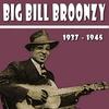 Couverture de l'album Big Bill Broonzy