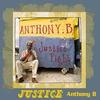 Couverture de l'album Justice Fight