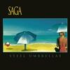 Couverture de l'album Steel Umbrellas