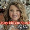 Cover of the album Mary Did You Know - Single
