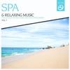 Couverture de l'album SPA & Relaxing Music, Vol. 19