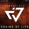 Couverture de l'album Chains of Life