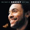 Couverture de l'album Mr. Lover Lover: The Best of Shaggy, Part 1