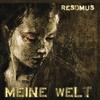 Couverture de l'album Meine Welt