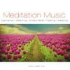 Couverture de l'album Meditation Music, Vol. 20