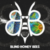 Cover of the album Blind Honey Bees