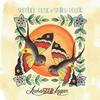 Couverture de l'album Sunshine Music for Smiling People