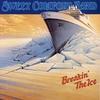 Cover of the album Breakin' the Ice