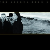 Cover of the track The Joshua Tree