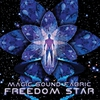 Cover of the album Freedom Star