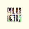 Couverture de l'album Polarbeers