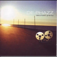 Cover of the track Detunized Gravity