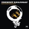 Couverture de l'album Trumpet Rhapsody