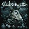 Couverture de l'album Evilution