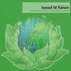 Couverture de l'album Sound of Nature