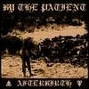 Couverture de l'album Afterbirth