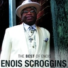 Couverture de l'album The Best of Enois