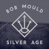Couverture de l'album Silver Age (Bonus Track Version)
