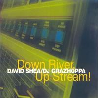 Couverture du titre Down River, Up Stream!