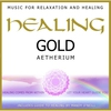 Couverture de l'album Healing Gold