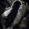 Cover of the album Liarbird (Liarbird)