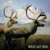 Cover of the album ... Still Hunting